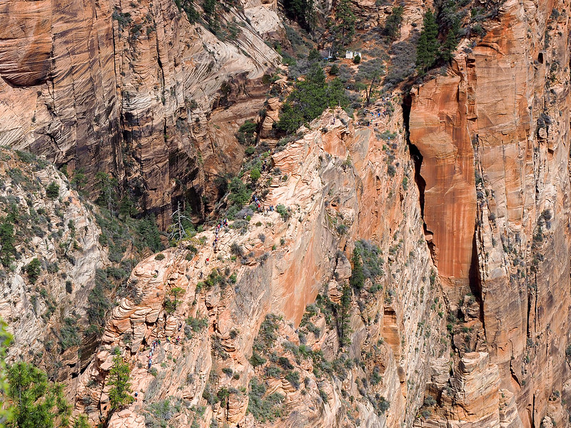 Spine of the Angels Landing Trail