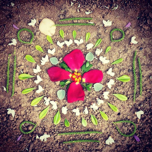 Garden Mandala No. 38 Every day there's something new to use. #spring #gardening #flowers #mandala #flowerstagram #landart #gardenartflowers #gardenartflowers #square #cinquefoil #locust #lantana #roses #petals #leaves #catkins