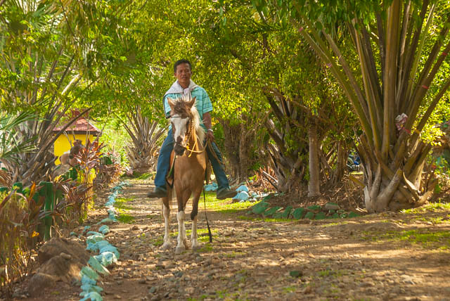 Horseback riding Rotonda Park Pagadian