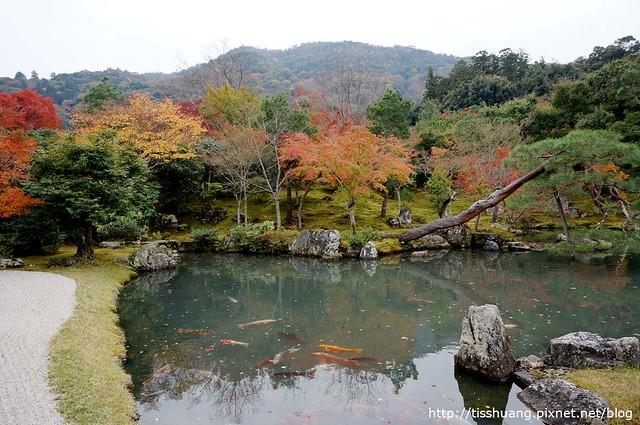 京都第四天134
