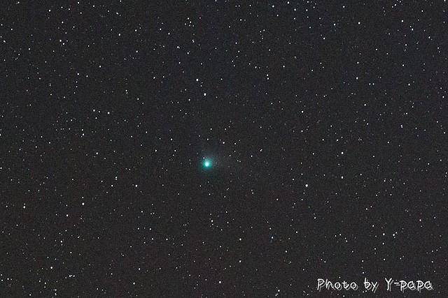 カタリナ彗星!かっこいい~!