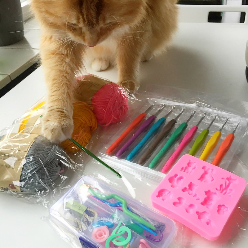 I have to help Human with her DIY-things, like her another DIY-things