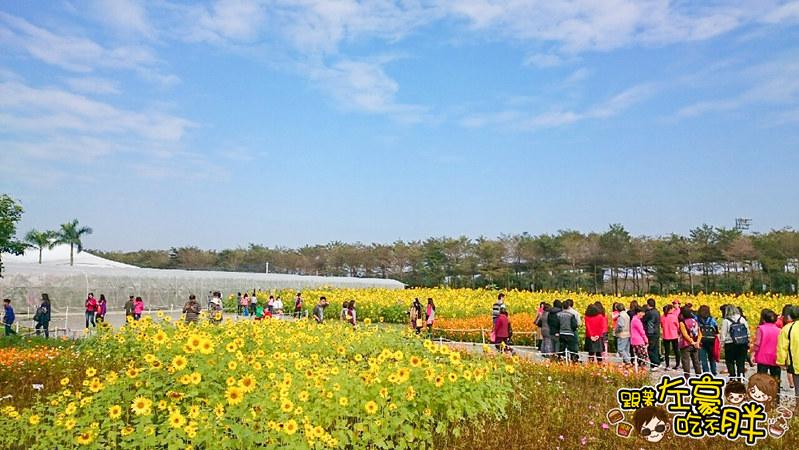 屏東熱帶農業博覽會 _1692