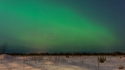 06.03.2016 Ülgase, Harjumaa, Harju County, Estonia