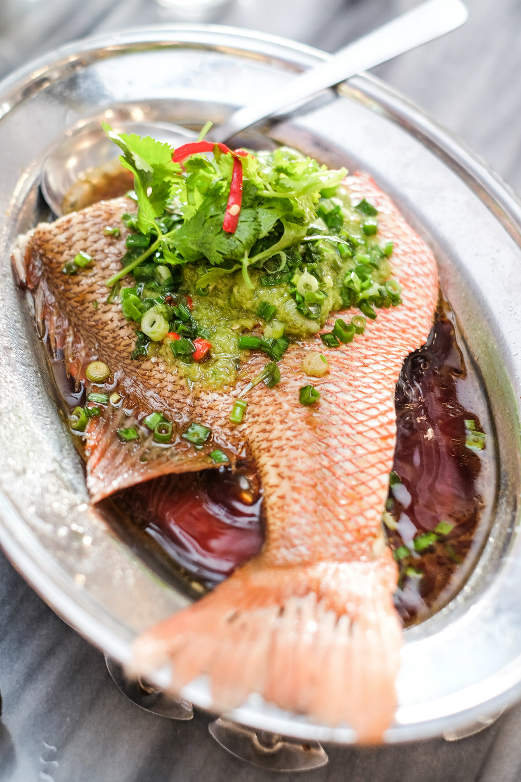 You Kee XO Restaurant (有记XO烧腊之家: Steamed Fish Tail