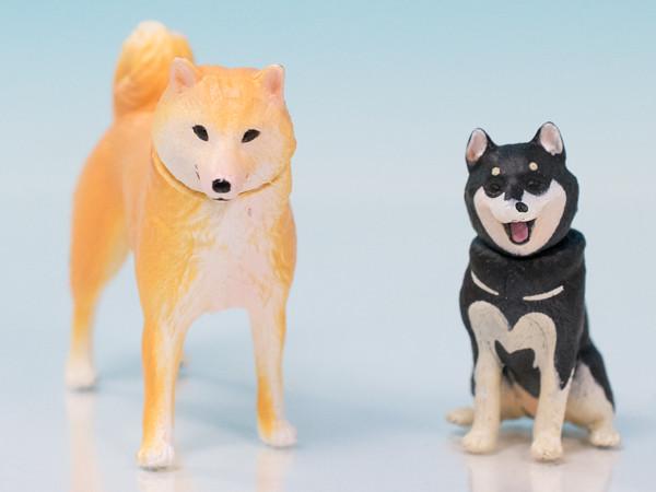 レビュー タカラトミー アニア AP-01 柴犬&豆芝