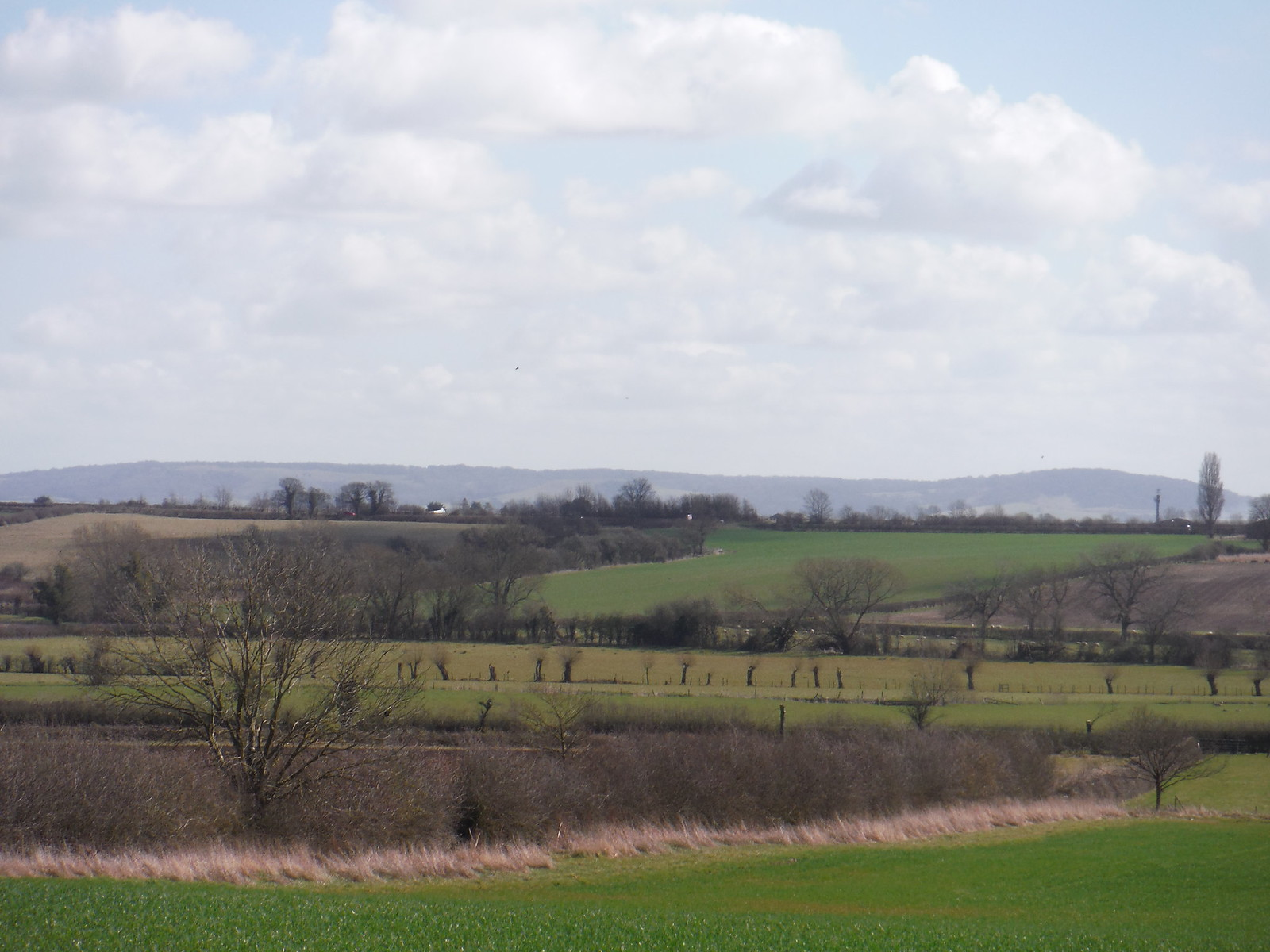Thame Valley and Chilterns, from Chearsley SWC Walk 193 Haddenham to Aylesbury (via Gibraltar and Ford)