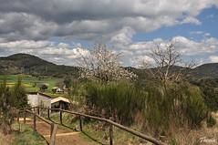 Garrotxa 2016