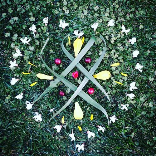 Garden Mandala No. 43 Friday I'm in LOVE #spring #gardening #flowers #mandala #flowerstagram #landart #gardenartflowers #gardenart #locust #plum #daylily #heart #mandalaart #ephemeral