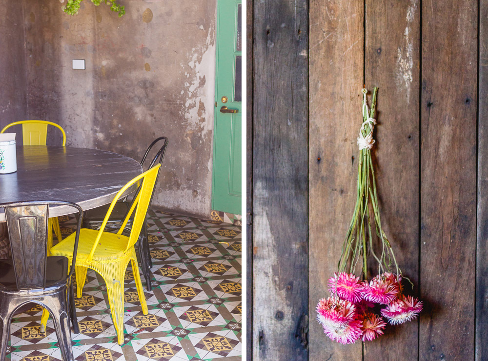 yellow metal chairs and flowers in the grounds of alexandria
