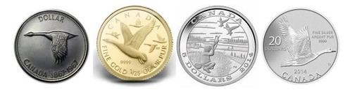 Canadian coin with geese