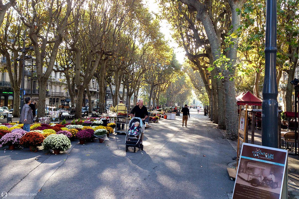 Flower Market on Allées Paul Riquet