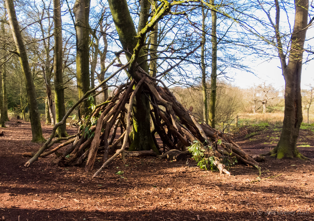 Someone's built a nice shelter in the Woodland Walk