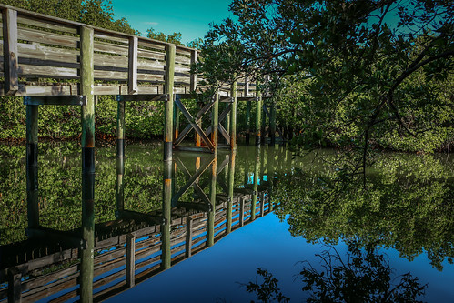 trees usa nature water canon landscape outside outdoors photography photo florida deck photograph walkway boardwalk sanctuary fortpierce bearpoint canon70d hutchinsonisalnd