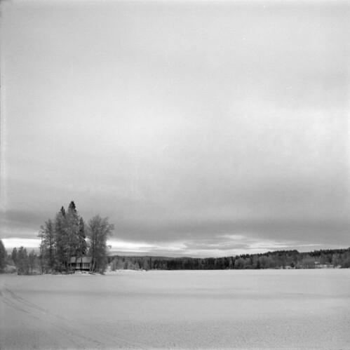 winter blackandwhite bw 6x6 film monochrome mediumformat kodak 120film mf tmax400 filmphotography carlzeissjena tmy400 biometar filmisnotdead 80mmf28 arax60mlu iamfilm believeinfilm