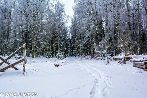 winter vinter sweden nora sverige alntorpsö