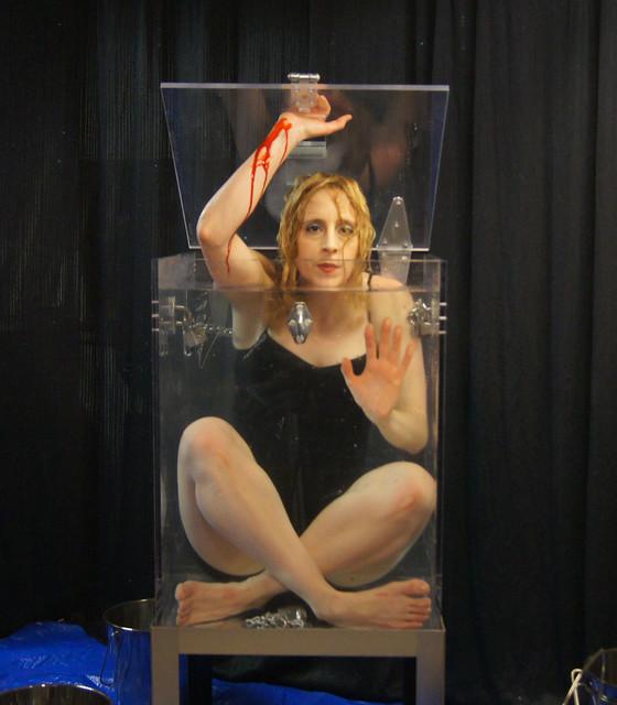 Houdini Girl does it again!