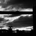 Cormorant in front of tower bridge by Benjamin Joseph Andrew