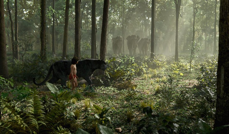 Neel Sethi finds his way back home in THE JUNGLE BOOK.