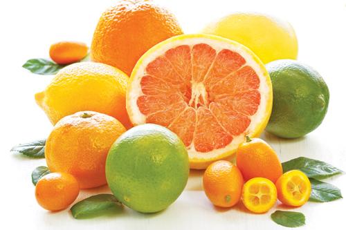 Phụ nữ có thai 3 tháng đầu nên ăn gì? - Trái cây thuộc họ cam quýt