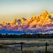 morning light by Marvin Bredel