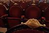 Buenos Aires - Teatro Colon seats