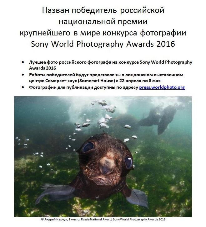 Sony2016