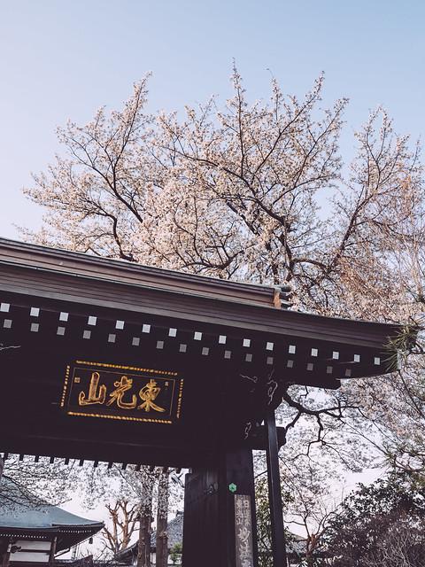 世田谷妙法寺