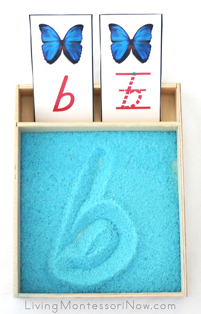 Butterfly-Themed Letter B Salt Tray