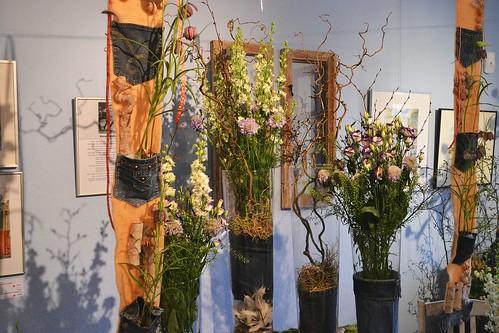 Floristisches vom Petersberg 2016