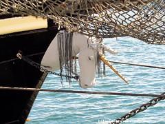 Tall Ships 2012 halifax nova scotia unicorn