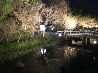 Japan - Nagashima Spa Land