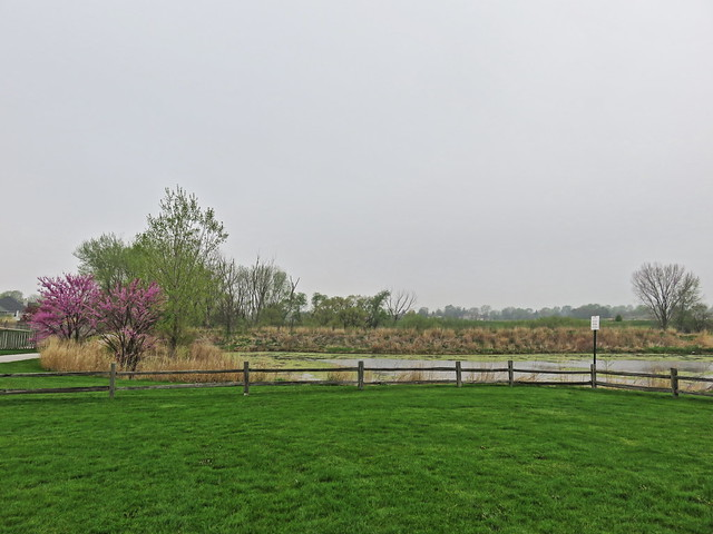 Jones Meadow Park 2-20160426