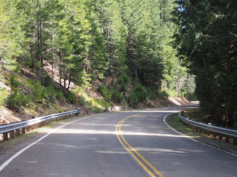 Mountain Loop Highway: rural forest