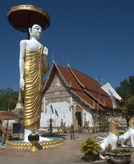 Standing Buddha with temple in background