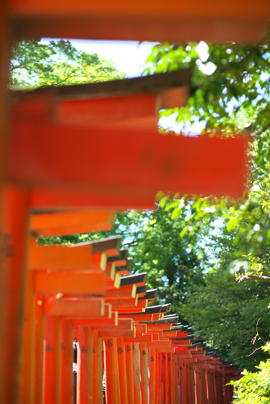 東京路地裏散歩 根津神社の文京つつじまつり 2016年4月29日