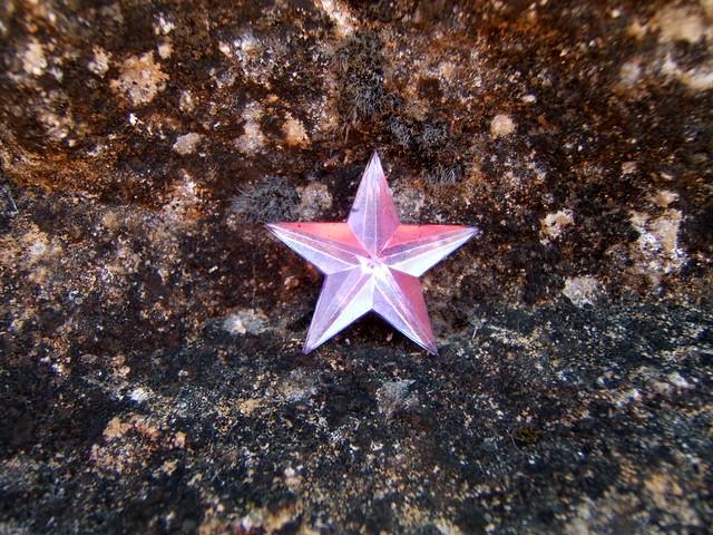La petite étoile, Fujifilm FinePix E500