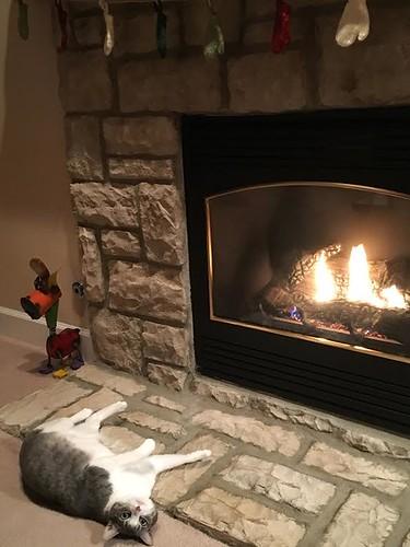 lily fireplace
