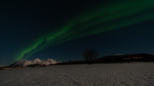 Aurora over moonlighted landscape