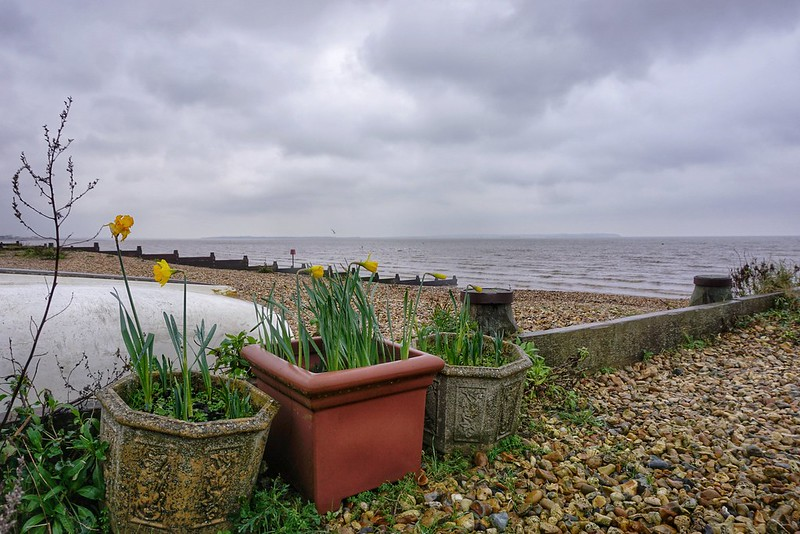 Clearing My Head in the Winds of Whitstable