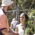 Sydney - City of Sydney's free tree giveaway, Sydney Park