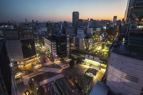 city morning station weather japan sunrise tokyo cityscape traffic shibuya urbanlandscape shibuyacrossing zebracross