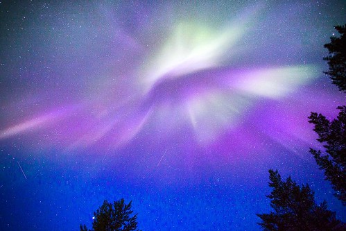 FINLAND: Aurora Aurora Aurora, who is the prettiest of them all? Looks like the wings of a bird.    #travel #travelphotography #canon #travelling #wanderlust #landscape #Lapland #finland #finlande #explore #picoftheday #photooftheday #phototag_it #adventu