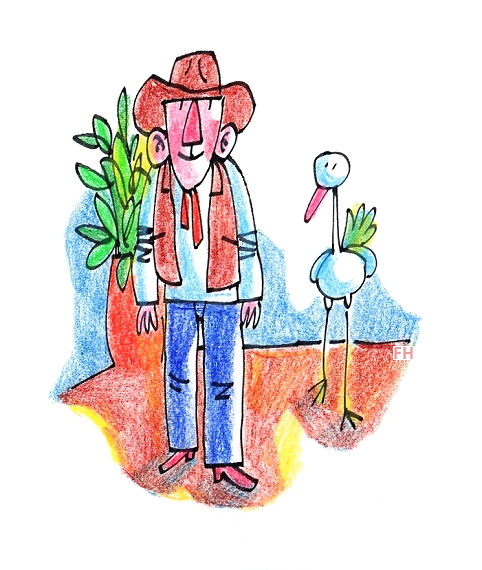 plant, cowboy and bird