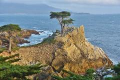 CALIFORNIA - Monterey Bay region