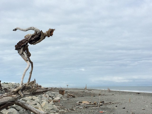 Grand prize winner driftwood art contest - Hokitika NZ