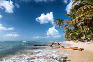 Azul del Caribe - Saona Island