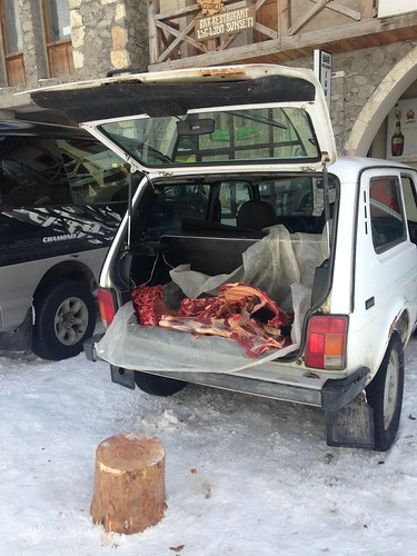 Meat from the back of a car.