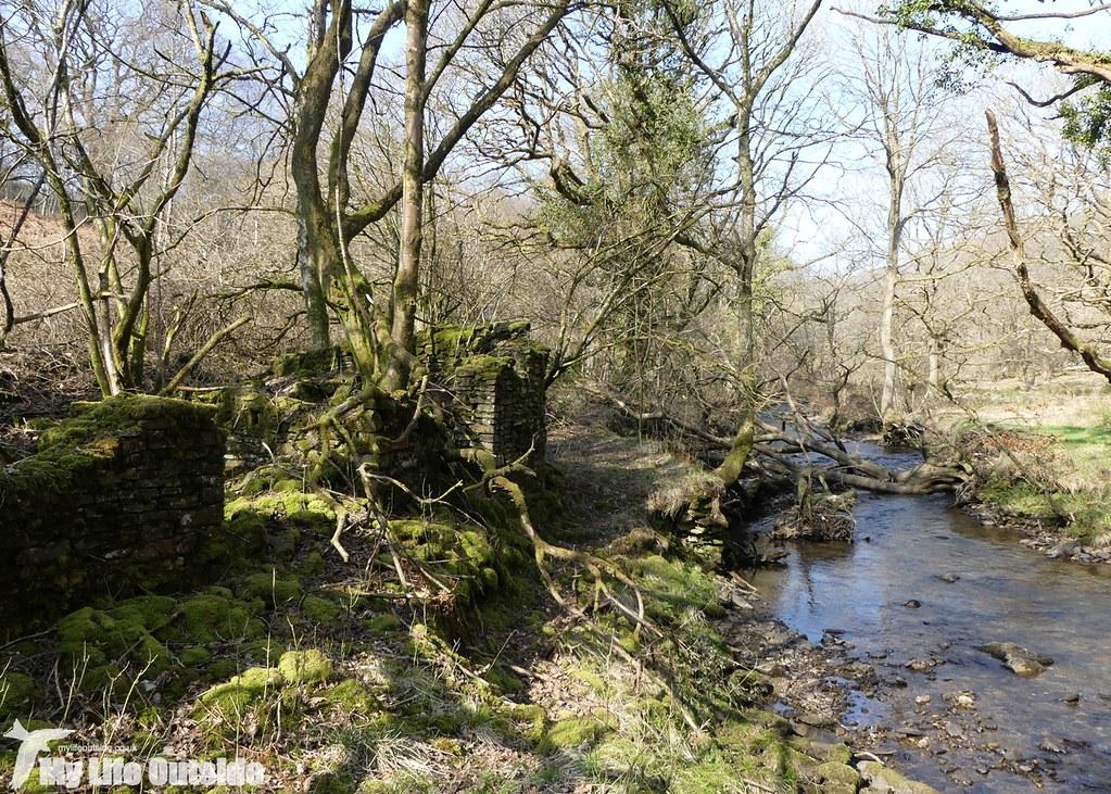 P1000490 - Ruin, Cwm Clydach