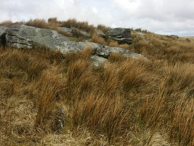 Unnamed outcrop near Lydford Tor